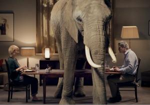 elephantxxx